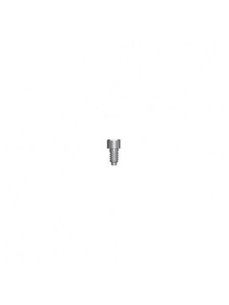 Винт фиксирующий для цилиндра